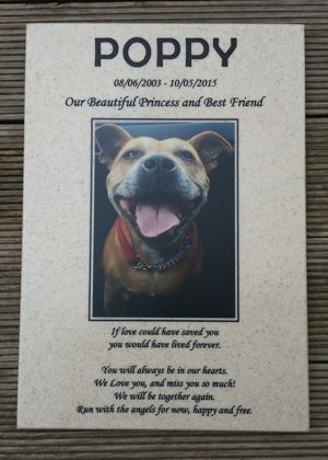 Dog memorial plaque Corian Aurora engraved black with colour photo