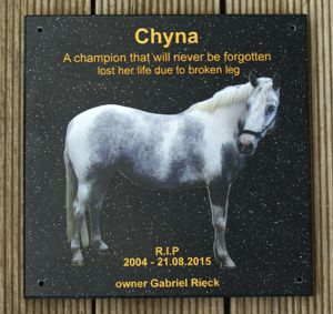 Memorial plate engraved corian stone black quartz Colour print and gold engraving