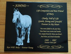 Memorial plaque for horse Nocturne colour engraved photo white text in gold 200 x 300 mm
