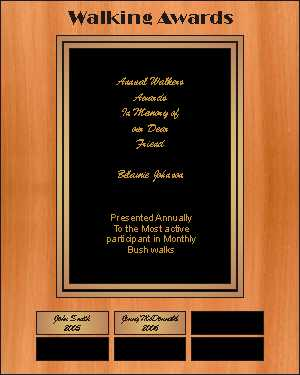 "Award Plaque 250 x 200 mm ( 10"" x 8 "" )"