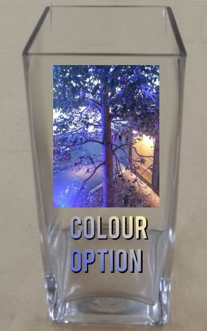 Thumb_Vase with colour printed image and text