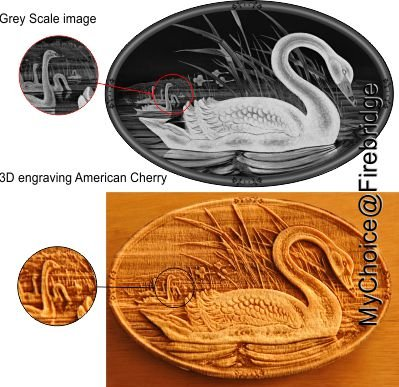 Laser engraved american cherry in 3D