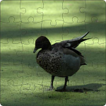 Jigsaw 190 mm Square Your photo
