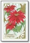 Christmas Cards red floral 014