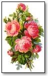 Floral pink carnation hand wreath 022