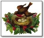 Christmas bird in nest with holly 264