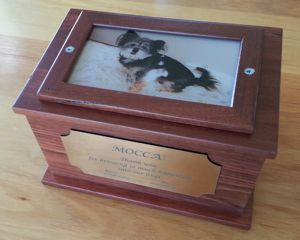 Keeping the Memory of your Pet Alive with Pet Memorial