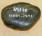 Thumb_Pet Rock white text