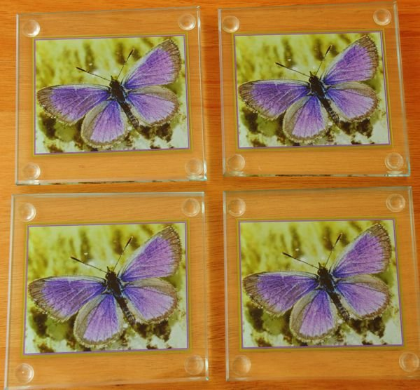 Thumb_Coasters custom butterfly photo print