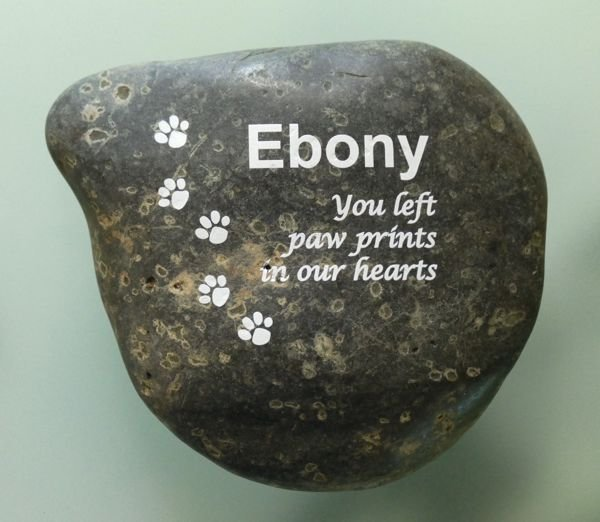 Thumb_Pet Rock white text and paw prints
