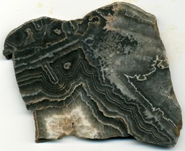 Polished Crazy Lace Agate