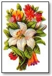 Floral white feature with orange red surrounds  029