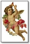 Valentine cupid with rose and butterfly 022