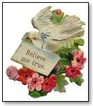 Dove with message Beleive Me True Valentine 025